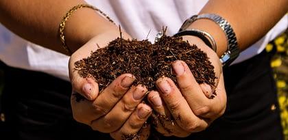 Venha conhecer o que é compostagem!